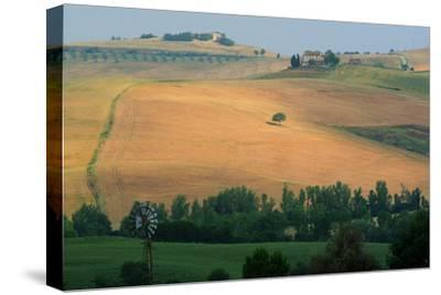 Tuscan Hill II-Robert Goldwitz-Stretched Canvas Print