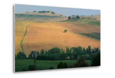 Tuscan Hill II-Robert Goldwitz-Metal Print