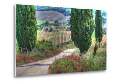 Tuscan Red Flower Road-Robert Goldwitz-Metal Print
