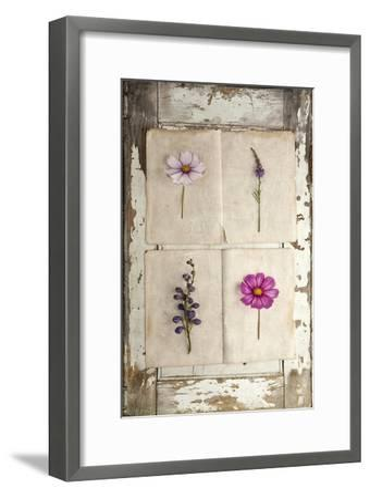 Botanical Board 4-Symposium Design-Framed Giclee Print