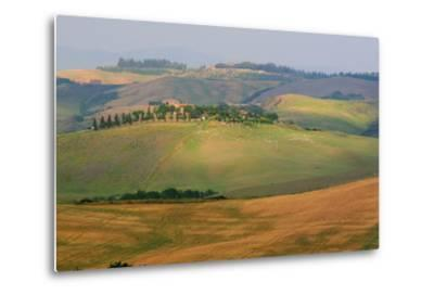 Tuscan Hill Sheep-Robert Goldwitz-Metal Print