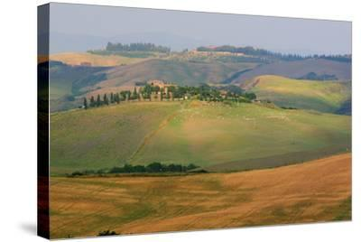 Tuscan Hill Sheep-Robert Goldwitz-Stretched Canvas Print
