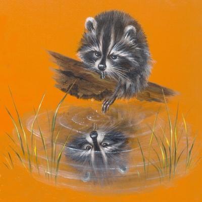 Reflective Racoon - 35A-Peggy Harris-Framed Giclee Print