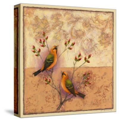 Two Orange Birds-Rachel Paxton-Stretched Canvas Print