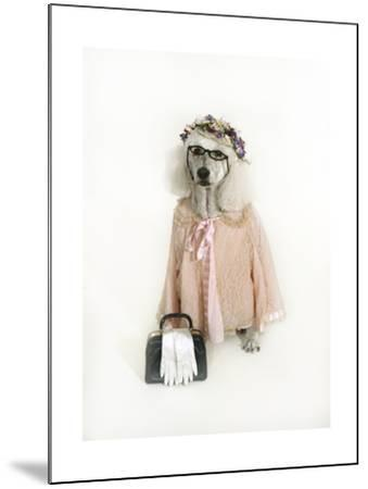 Poodle Dressed as Older Woman-Nora Hernandez-Mounted Giclee Print
