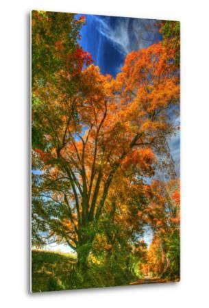 Autumn Borden Road Vertical-Robert Goldwitz-Metal Print
