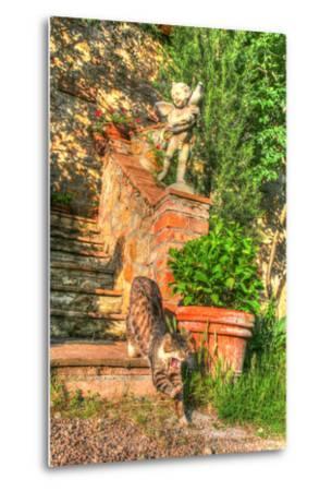 Tuscan Vertical Cat on Stairs-Robert Goldwitz-Metal Print