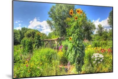 Sunflowers and Garden-Robert Goldwitz-Mounted Premium Giclee Print
