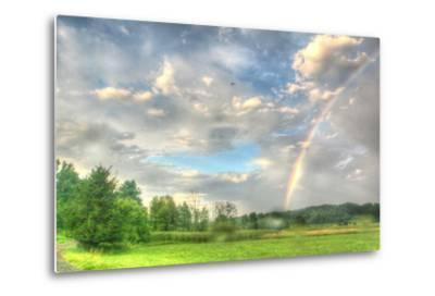 Rainbow and Heron-Robert Goldwitz-Metal Print