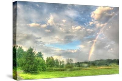 Rainbow and Heron-Robert Goldwitz-Stretched Canvas Print