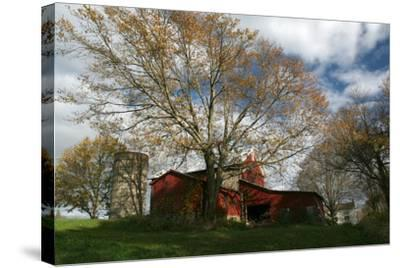 Early Spring Tree Barn-Robert Goldwitz-Stretched Canvas Print