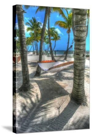 Higgs Beach Hammock-Robert Goldwitz-Stretched Canvas Print