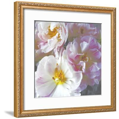 Bright Peony I-Symposium Design-Framed Giclee Print