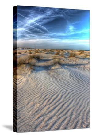 Dune Lines Vertical-Robert Goldwitz-Stretched Canvas Print