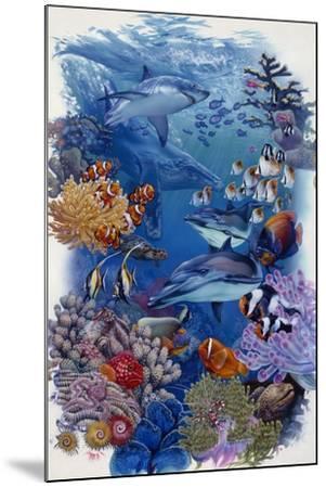 Reef-Tim Knepp-Mounted Giclee Print