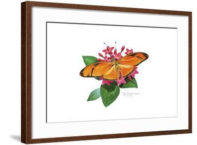 Julia Butterfly-Tim Knepp-Framed Giclee Print