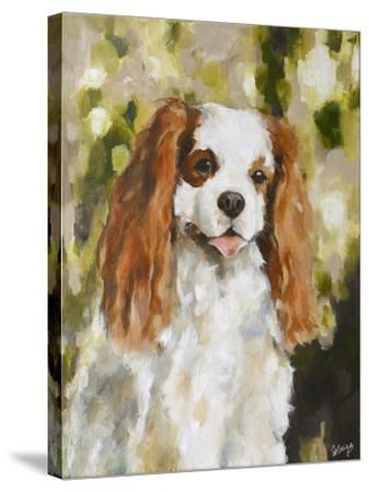 Cavalier King Charles-Solveiga-Stretched Canvas Print