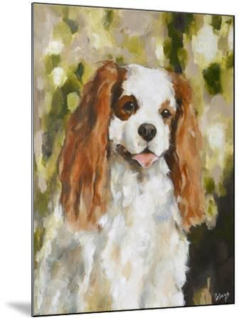 Cavalier King Charles-Solveiga-Mounted Giclee Print