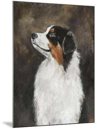 Australian Shepherd-Solveiga-Mounted Giclee Print