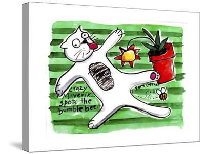 Crazy Maverix - Simple Life #3-Sara Catena-Stretched Canvas Print