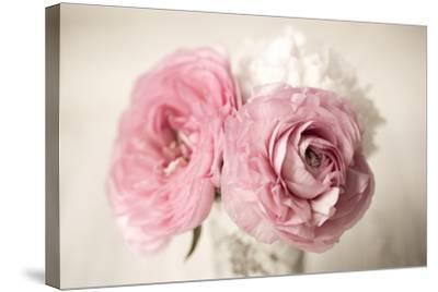 Ranuncula Pink Vase-Symposium Design-Stretched Canvas Print