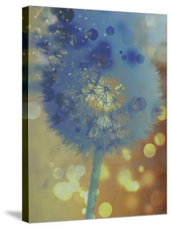 Wishful Thinking II-Tina Lavoie-Stretched Canvas Print