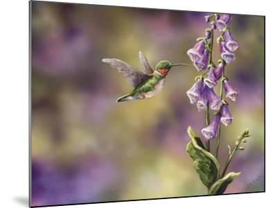 Spring Hummingbird-Sarah Davis-Mounted Giclee Print