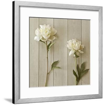 Peonies-Symposium Design-Framed Giclee Print
