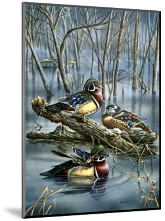 Misty Woodducks-Wanda Mumm-Mounted Giclee Print