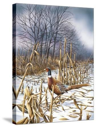 Northern Light-Wanda Mumm-Stretched Canvas Print