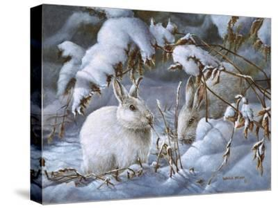 Winter Hares-Wanda Mumm-Stretched Canvas Print
