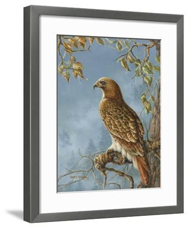 Retail Hawk-Wanda Mumm-Framed Giclee Print