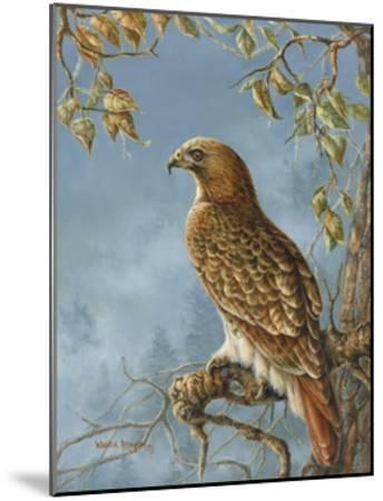 Retail Hawk-Wanda Mumm-Mounted Giclee Print