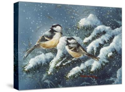 December Chickadees-Wanda Mumm-Stretched Canvas Print
