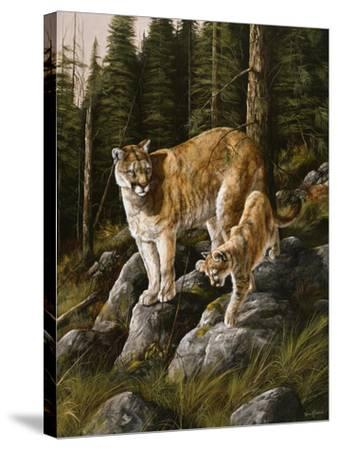 Mother and Child (Mt. Lions)-Trevor V. Swanson-Stretched Canvas Print
