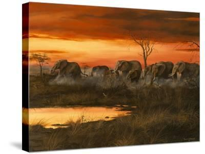 Sunset River Crossing-Trevor V. Swanson-Stretched Canvas Print