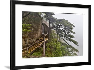 Trail in Fog, Yellow Mountains a UNESCO World Heritage Site-Darrell Gulin-Framed Photographic Print