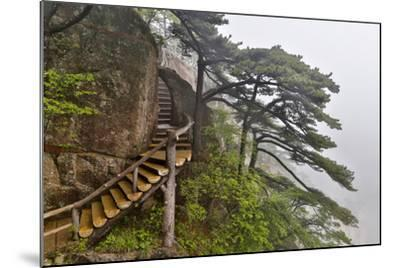 Trail in Fog, Yellow Mountains a UNESCO World Heritage Site-Darrell Gulin-Mounted Photographic Print