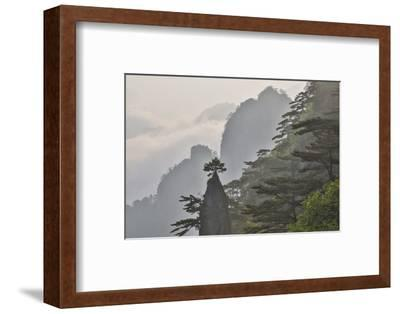 Yellow Mountains a UNESCO World Heritage Site-Darrell Gulin-Framed Photographic Print