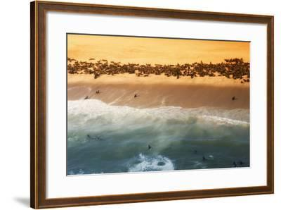 Skeleton Coast, Namibia. Abstract View of a Colony of Cape Fur Seals-Janet Muir-Framed Photographic Print