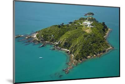 Matiu, Somes Island, Wellington Harbour, Wellington, New Zealand-David Wall-Mounted Photographic Print