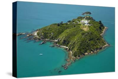 Matiu, Somes Island, Wellington Harbour, Wellington, New Zealand-David Wall-Stretched Canvas Print