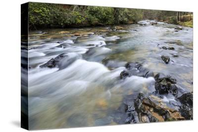 Long Exposure of a Mountain Stream in North Carolina-James White-Stretched Canvas Print