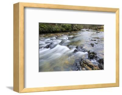 Long Exposure of a Mountain Stream in North Carolina-James White-Framed Photographic Print