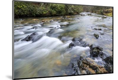 Long Exposure of a Mountain Stream in North Carolina-James White-Mounted Photographic Print