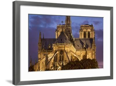 Cathedral Notre Dame, Paris, France-Brian Jannsen-Framed Photographic Print