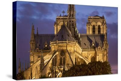 Cathedral Notre Dame, Paris, France-Brian Jannsen-Stretched Canvas Print