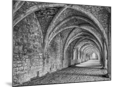 Fountains Abbey Yorkshire England-John Ford-Mounted Photographic Print