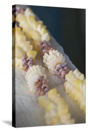 French Polynesia, Island of Mangareva, Rikitea. Mixed Seashell Lei-Cindy Miller Hopkins-Stretched Canvas Print