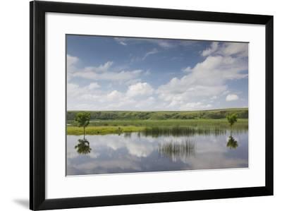 Romania, Danube River Delta, Baltenii de Sus, Danube River Reflection-Walter Bibikow-Framed Photographic Print